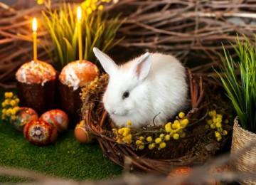 Как отмечают праздник Пасхи в Германии и когда будет в 2020 году?