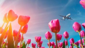 Как отдыхаем и работаем в 2020 году на майские праздники?
