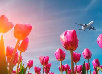 Как отдыхаем и работаем в 2019 году на майские праздники?