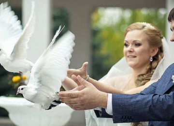 На какую сумму обойдется отпраздновать свадьбу в России и других странах?