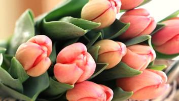 Удивить жену красивыми поздравлениями на 8 Марта — просто