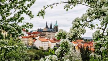 Куда можно было съездить на майские праздники?